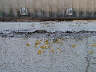 車の塗料?が付いた塀