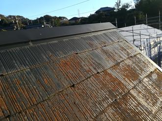 藻と苔で汚れている屋根