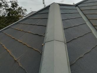 屋根材の下端には藻や苔が発生