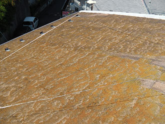 苔だらけのスレート屋根