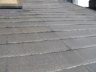 厚木市 屋根調査 苔の発生